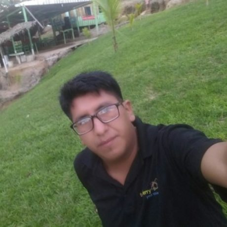 Foto del perfil de Edwin Mamani Huanca